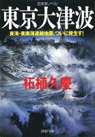近未来ノベル 東京大津波