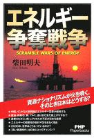 エネルギー争奪戦争