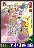 並木橋通りアオバ自転車店(18)