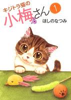 キジトラ猫の小梅さん(1)