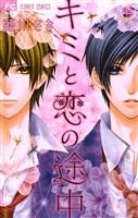 キミと恋の途中(2)