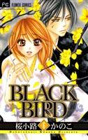 BLACK BIRD(6)