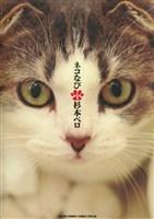 ネコなび(1)