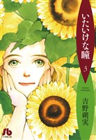 いたいけな瞳〔文庫〕(3)