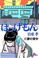 ぼっけもん(12)