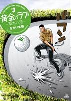 黄金のラフ2~草太の恋~(3)