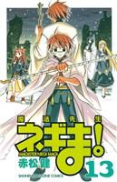 魔法先生ネギま!(13)