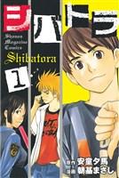 シバトラ(1)