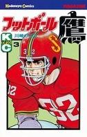フットボール鷹(3)