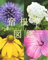 『宿根草図鑑 Perennials』の電子書籍
