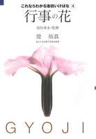 『これならわかる池坊いけばな[4]行事の花』の電子書籍