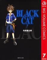 BLACK CAT 7