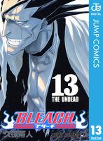 BLEACH モノクロ版 13