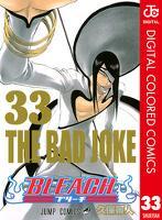 BLEACH カラー版 33