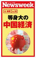 等身大の中国経済(ニューズウィーク日本版e-新書No.28)