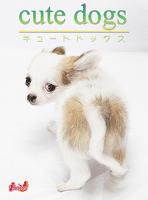 cute dogs12 チワワ