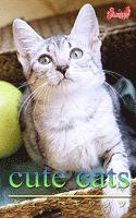 cute cats14 エジプシャンマウ