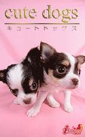 cute dogs15 チワワ