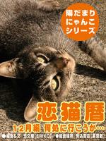 恋猫暦~12月編 何処に行こうか…