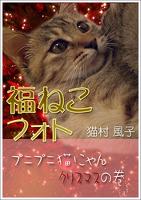 福ねこフォト~プニプニ猫にゃん クリスマスの巻