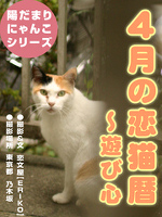 恋猫暦~4月編 遊び心