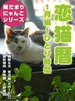 恋猫暦~1月編 ひとり時間