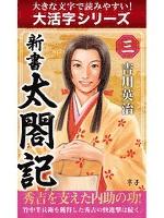 【大活字シリーズ】新書 太閤記 三