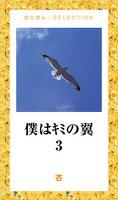 僕はキミの翼3