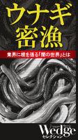 ウナギ密漁 業界に根を張る「闇の世界」とは (Wedgeセレクション No.47)
