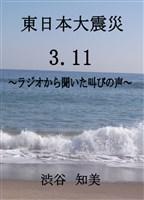 東日本大震災 3.11 ~ラジオから聞こえた叫びの声~