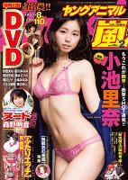 【電子版】ヤングアニマル嵐No.2(2015年)【期間限定 無料お試し版】