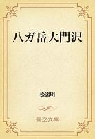 八ガ岳大門沢