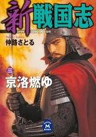 新 戦国志 3