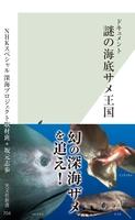ドキュメント 謎の海底サメ王国