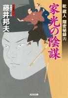 家光の陰謀~乾蔵人 隠密秘録(六)~