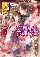 守護姫さまの花嫁修業(イラスト簡略版)