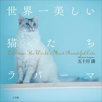 世界一美しい猫たち ラパーマ~LaPerms: The Wolrld's Most Beautiful Cats~