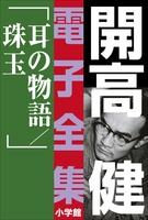 開高 健 電子全集17 耳の物語/珠玉