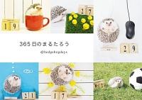 『【期間限定特別価格】365日のまるたろう』の電子書籍
