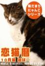 恋猫暦~10月編 道は…