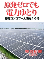 原発ゼロでも電力ゆとり 節電コツコツ+太陽光10倍