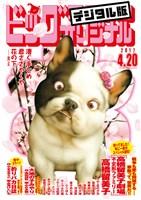 ビッグコミックオリジナル 2017年8号(2017年4月5日発売)