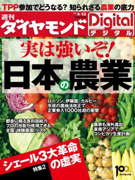 週刊ダイヤモンド 2013/4/13号「実は強いぞ! 日本の農業」