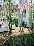 新建築住宅特集 2015年5月号