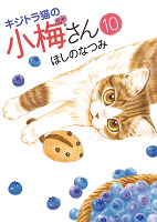 キジトラ猫の小梅さん(10)