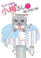 キジトラ猫の小梅さん(7)