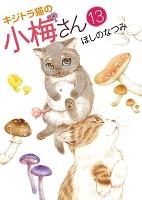 キジトラ猫の小梅さん(13)
