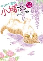 キジトラ猫の小梅さん(19)