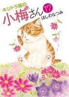 キジトラ猫の小梅さん(17)