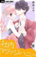社内マリッジハニー【マイクロ】(19)